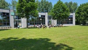 Campus vert de l'ESM-A